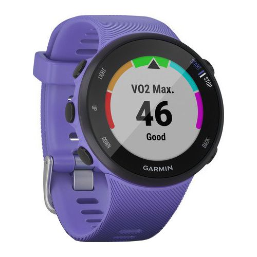 Smartwatch Garmin Forerunner 45S Iris